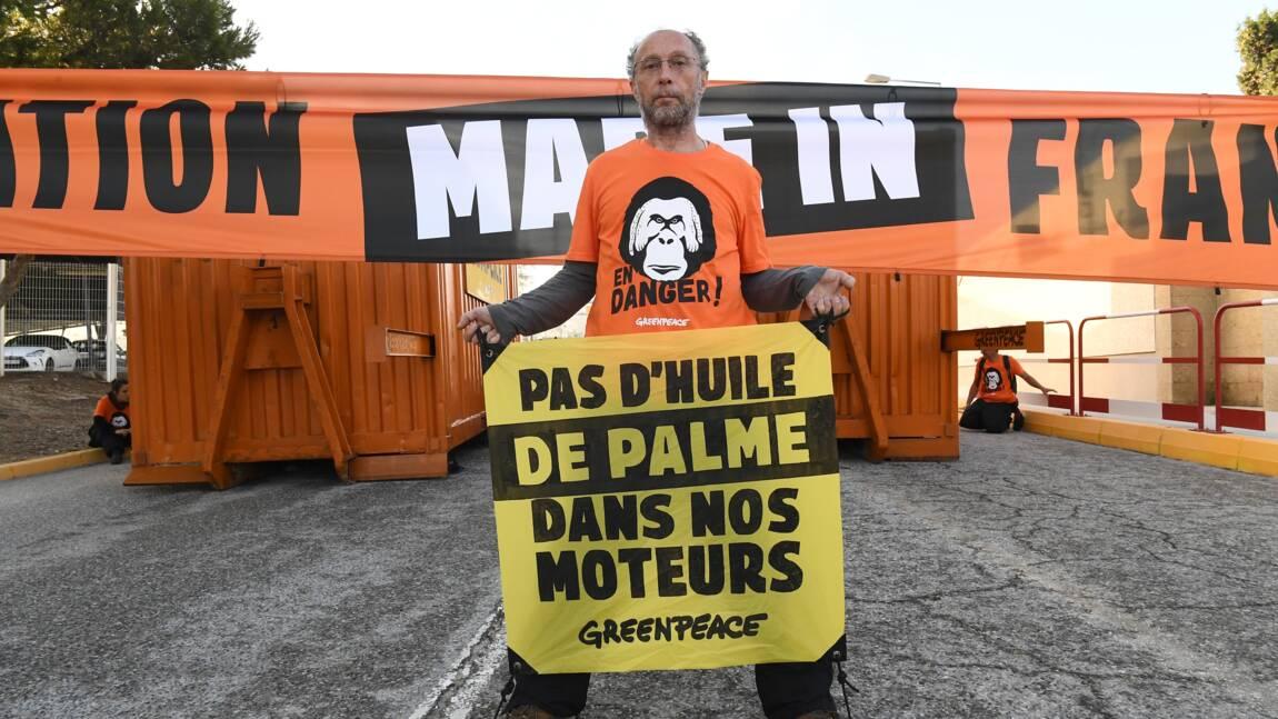 Greenpeace bloque une raffinerie de Total utilisant de l'huile de palme