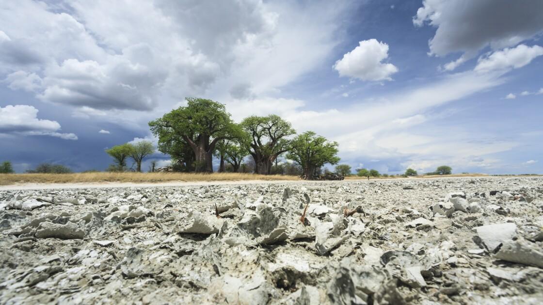 Des scientifiques pensent avoir localisé le berceau de l'homme moderne dans le sud de l'Afrique