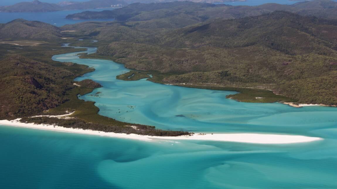 Australie: les professionnels du tourisme inquiets après les attaques d'un requin