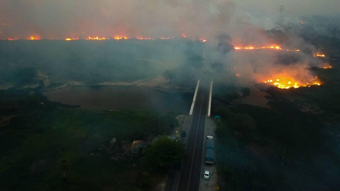 """Brésil: des incendies """"d'une intensité jamais vue"""" au Pantanal"""