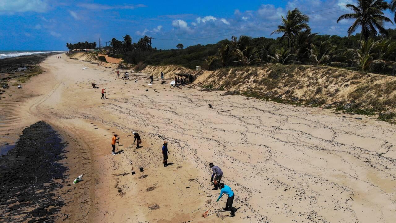 """Brésil : un tanker sous pavillon grec """"principal suspect"""" de la marée noire"""