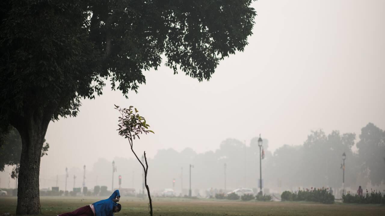 """""""État d'urgence sanitaire"""": New Delhi suffoque sous un pic de pollution"""