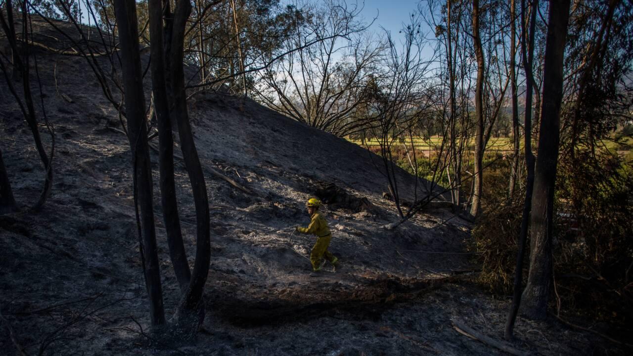 Incendies: Trump menace (encore) de priver la Californie des aides fédérales