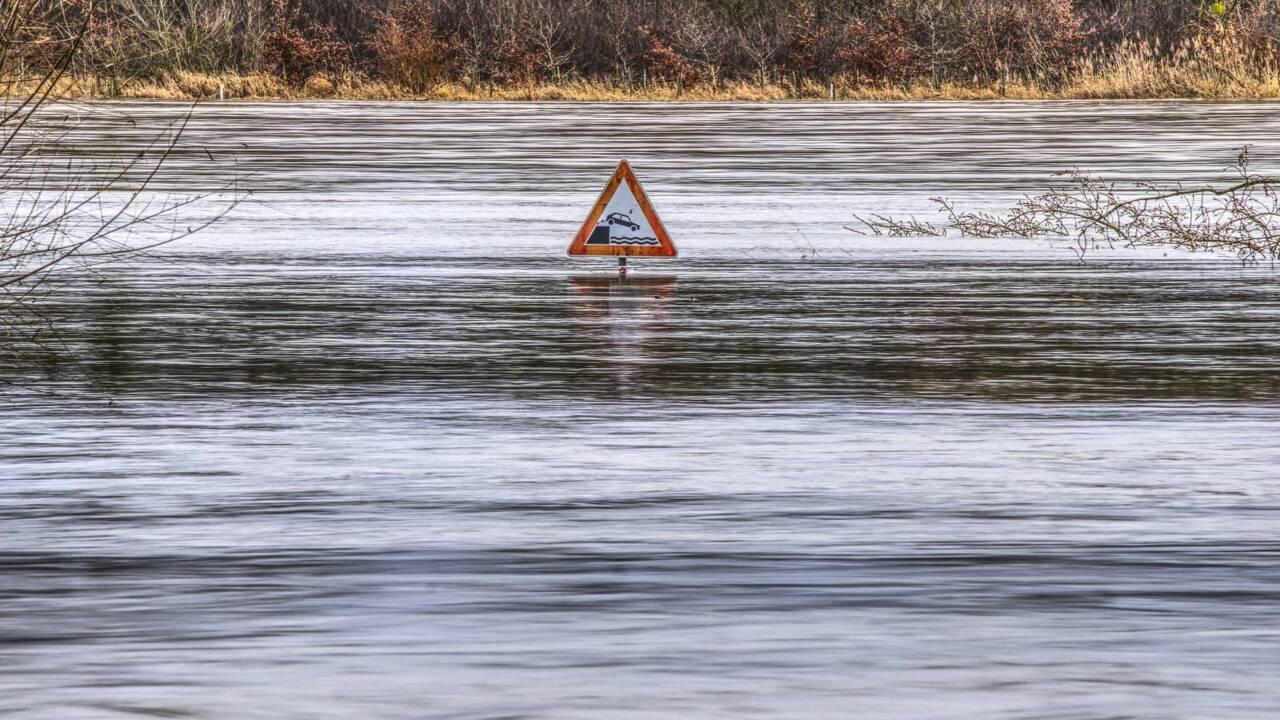 Suricate-Nat, une sentinelle des catastrophes naturelles via Twitter