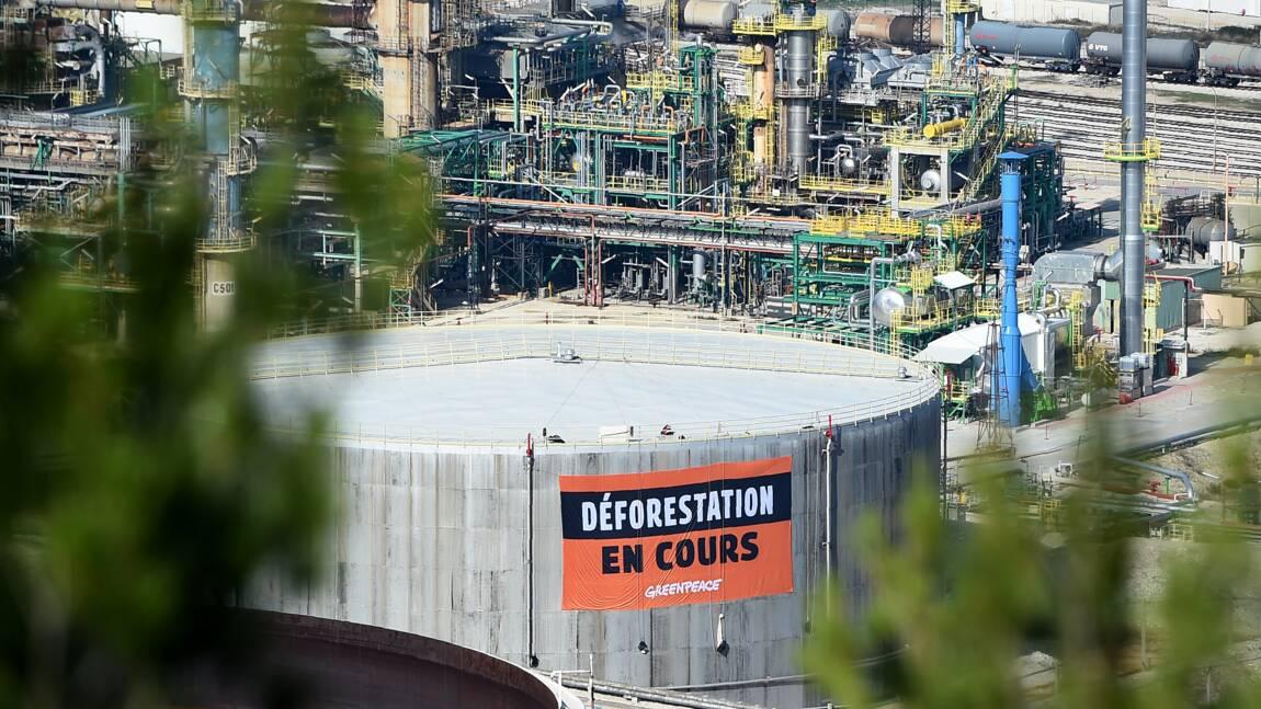 Huile de palme et biocarburants: des ONG dénoncent l'emploi éventuel d'un sous produit