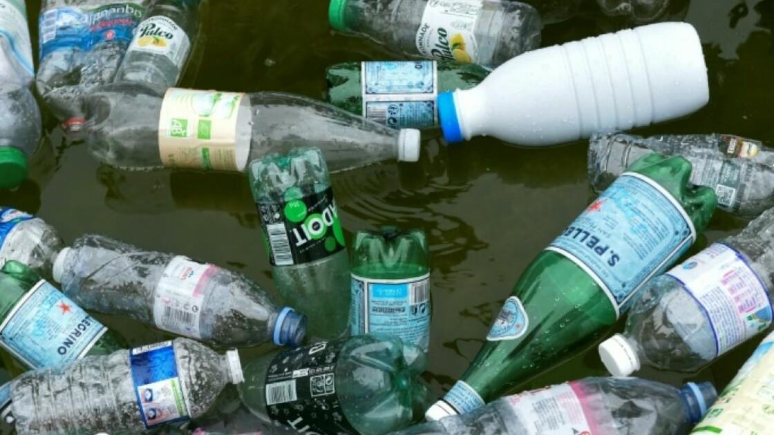 Tara et des ONG craignent l'enterrement du projet de consignes plastiques