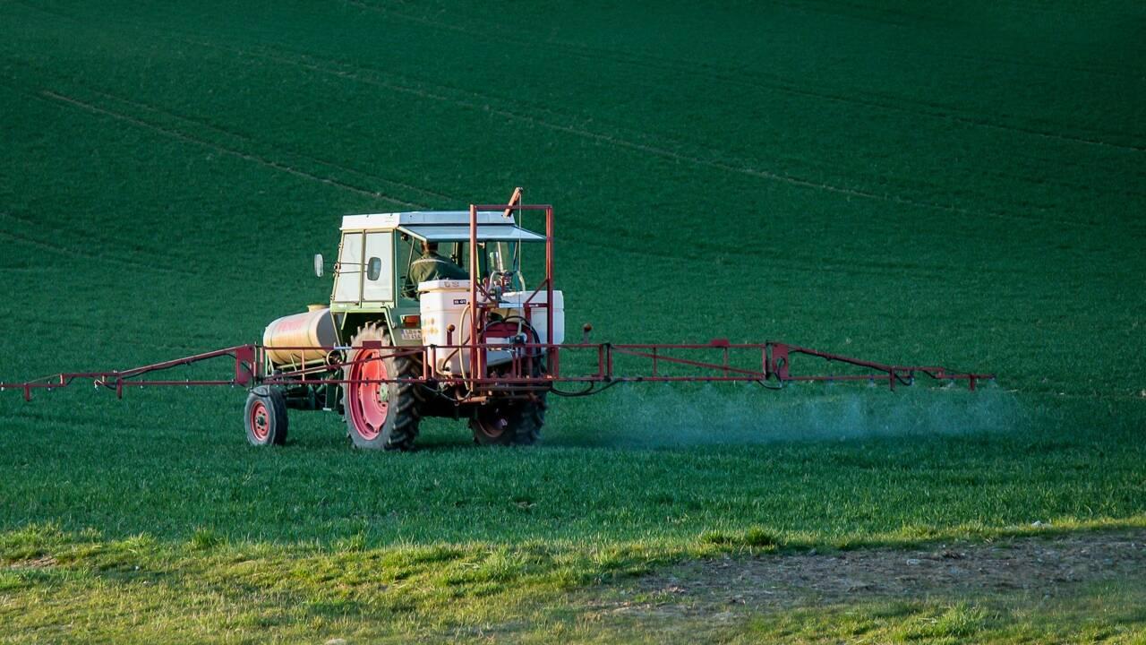 Lancement d'une pétition européenne pour interdire les pesticides de synthèse