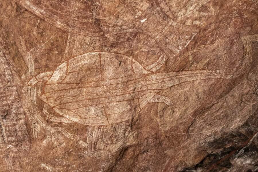 Dessins rupestres dans la roche
