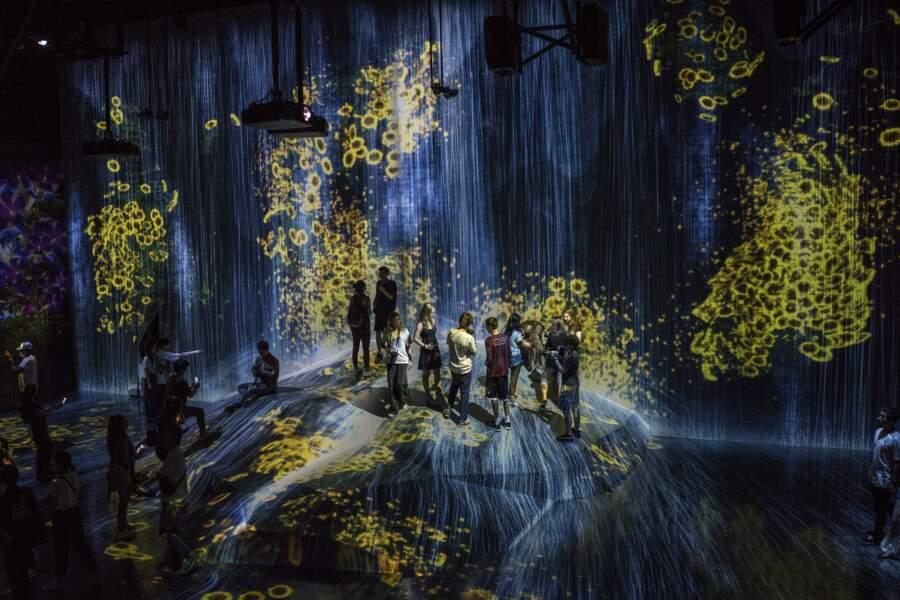 Les artistes envahissent la baie de Tokyo