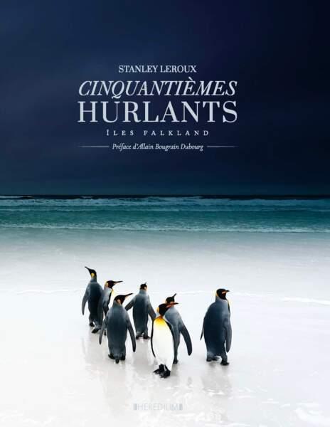 Cinquantièmes hurlants : Iles Falkland