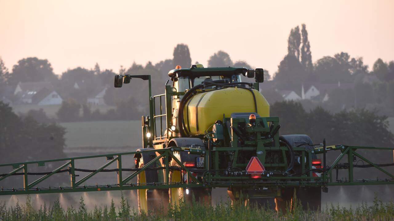 Agriculture: mise en garde sur les risques des variétés tolérantes à un herbicide