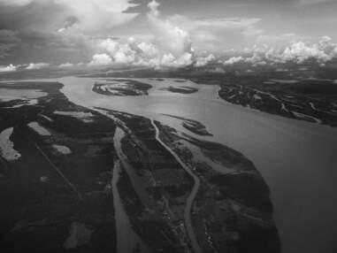 Amazonie brésilienne : derrière la plus grande forêt du monde, un territoire sans foi ni loi