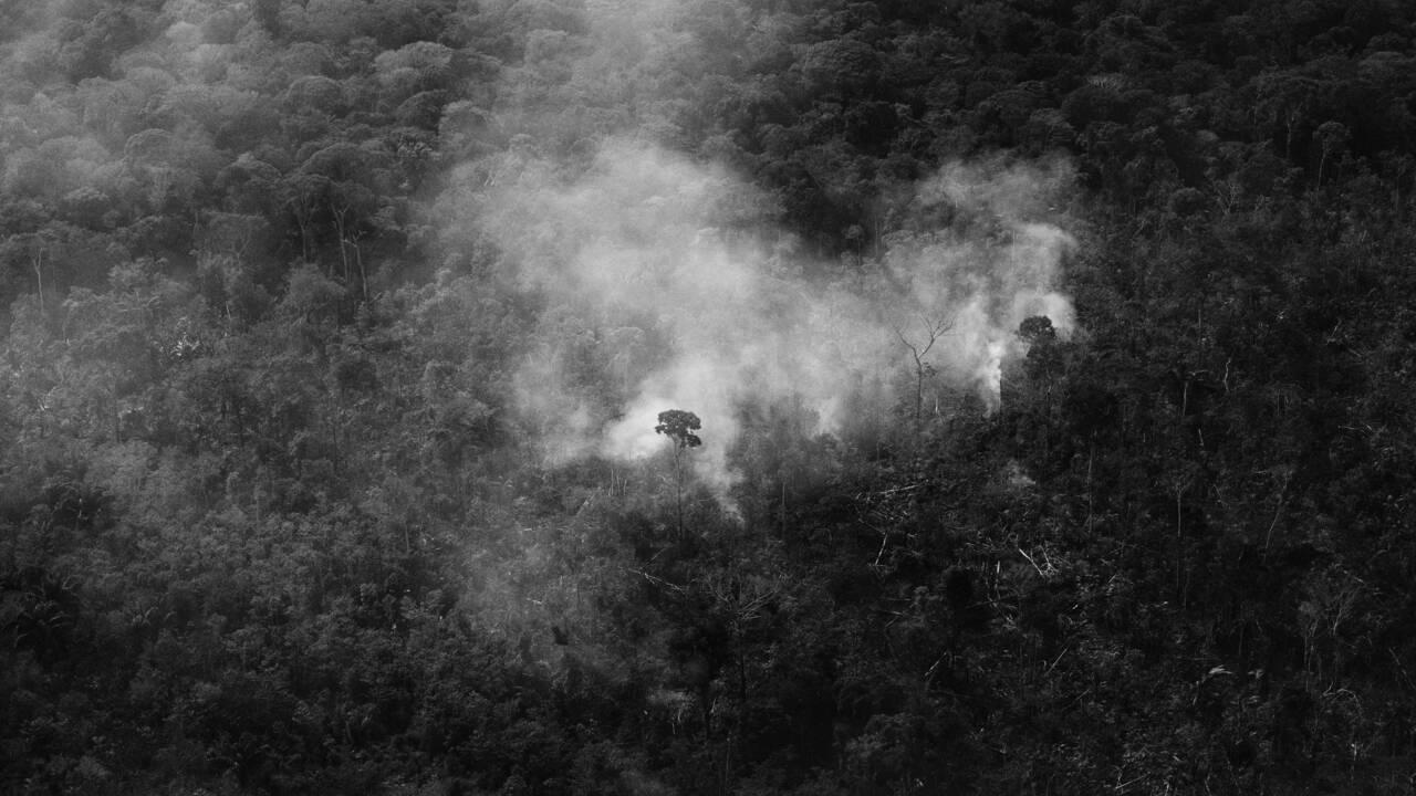 """Pour le photographe Tommaso Protti, """"impossible de sauver l'Amazonie sans lutter contre la pauvreté"""""""