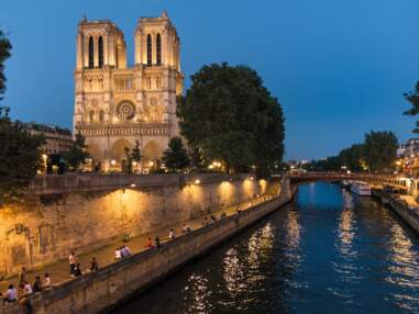 Notre-Dame de Paris retrouve sa superbe dans un livre hommage
