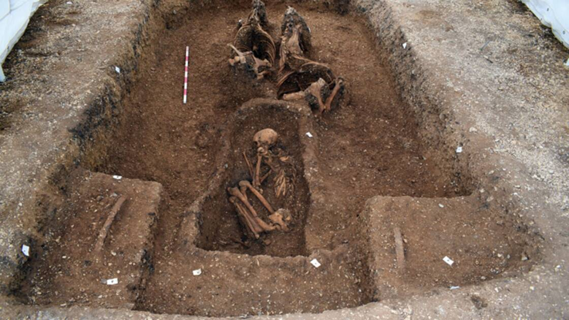 Découverte d'une tombe à chariot Une-tombe-celte-vieille-de-2200-ans-revele-un-chariot-et-un-bouclier-exceptionnel-en-angleterre