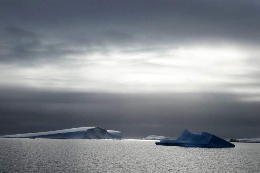 Péninsule : Mikkelsen Harbour et île Spert