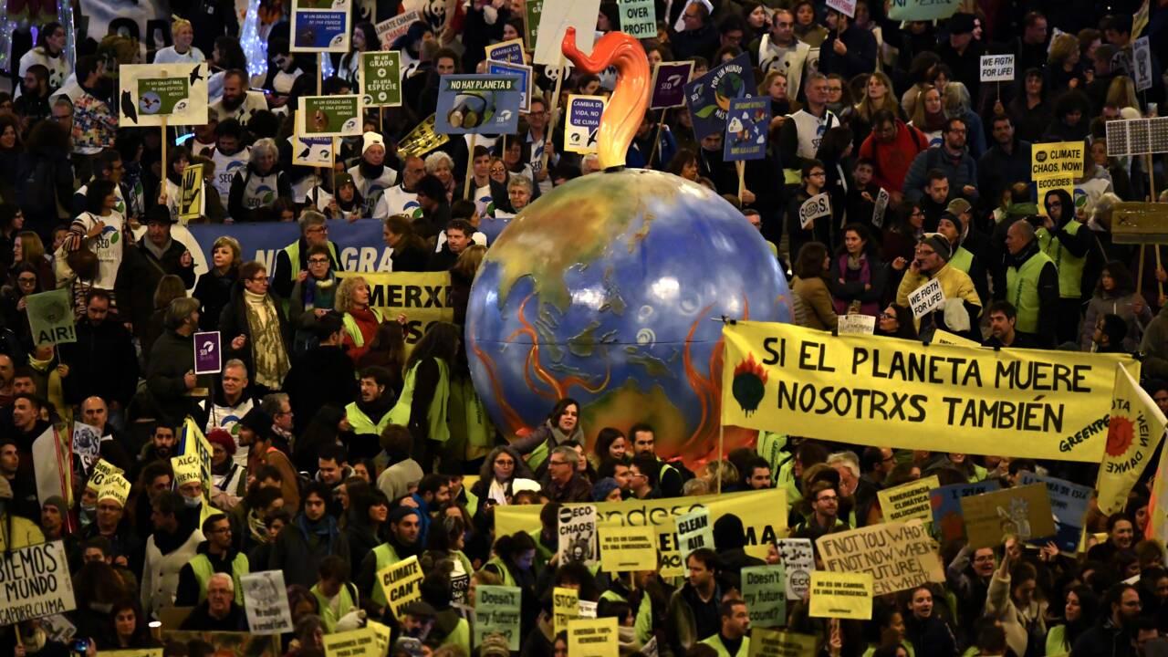 A la COP25 sur le climat, la protection de la nature cherche sa place
