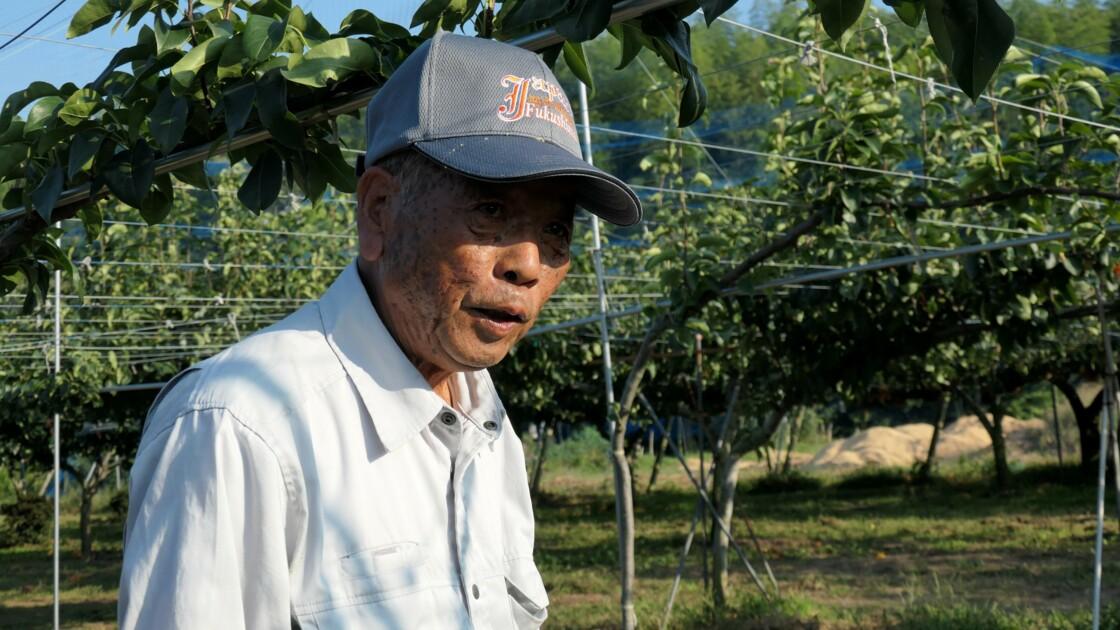 Fukushima: la décontamination des sols a fortement réduit la radioactivité