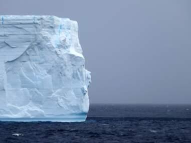 L'Antarctique en 10 instantanés