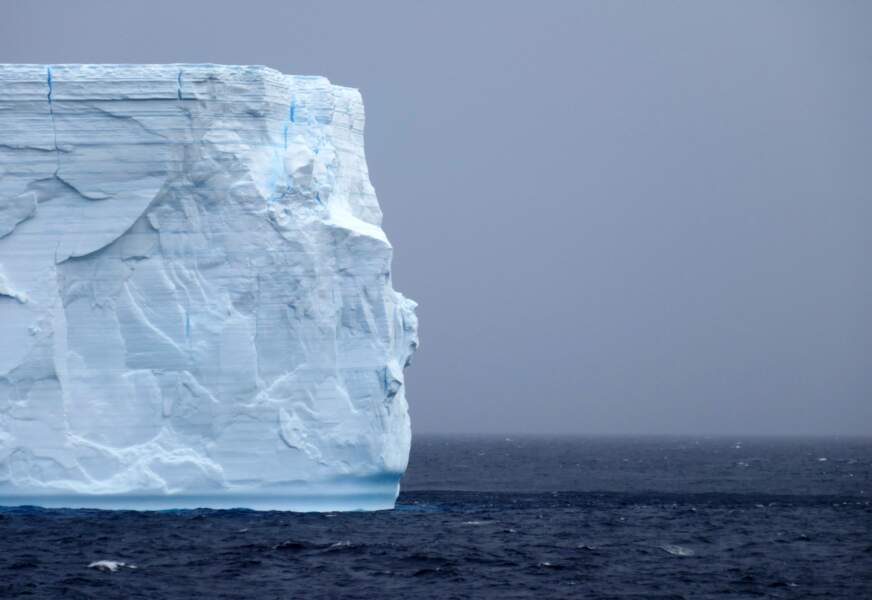 Arrivée sur la péninsule Antarctique : Elephant Island
