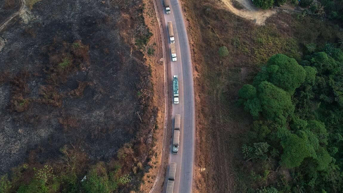Brésil: la déforestation a plus que doublé en Amazonie en un an