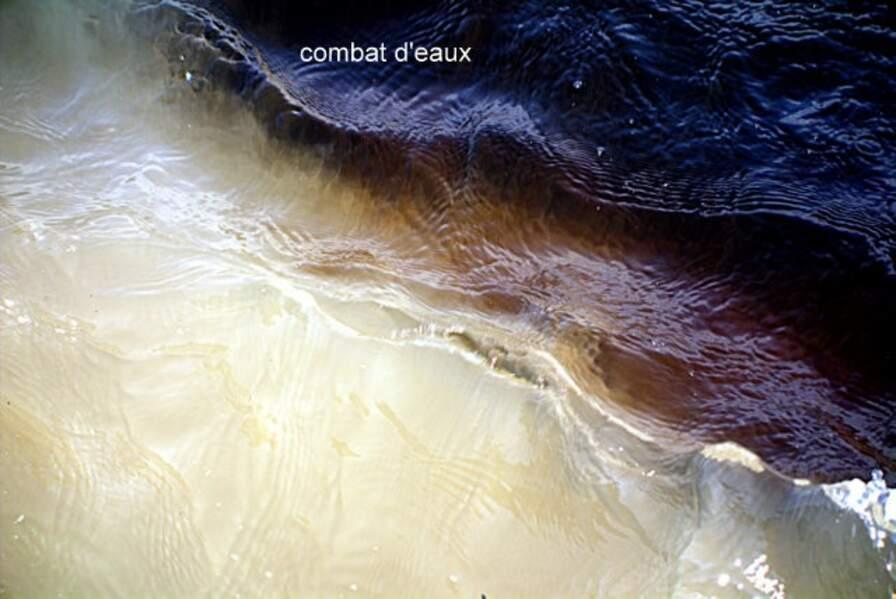 L'Amazone à la rencontre des eaux
