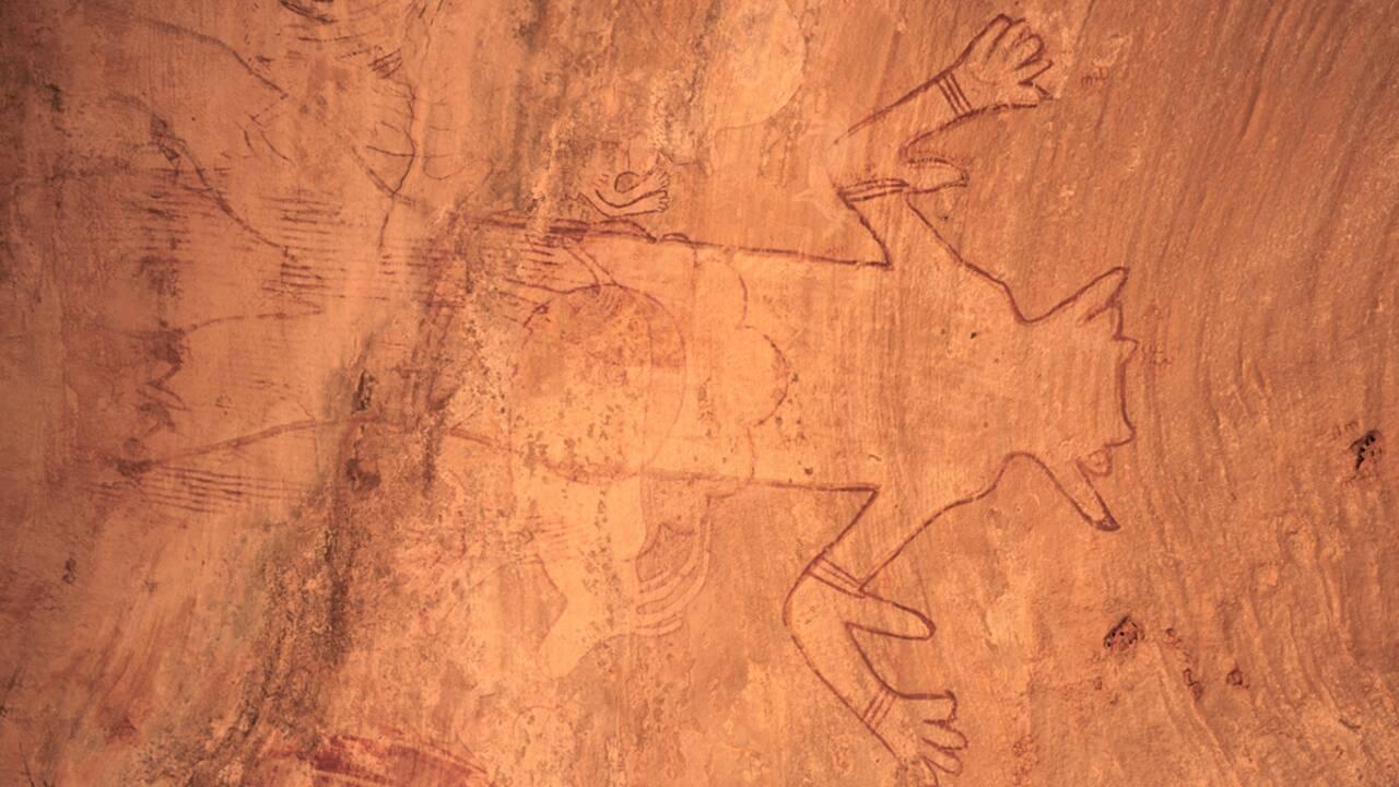 Dans le Sahara algérien, les mystères des forêts de pierre