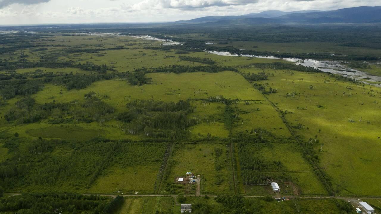 Des hectares de terre gratuits : comment le gouvernement russe espère repeupler la Sibérie