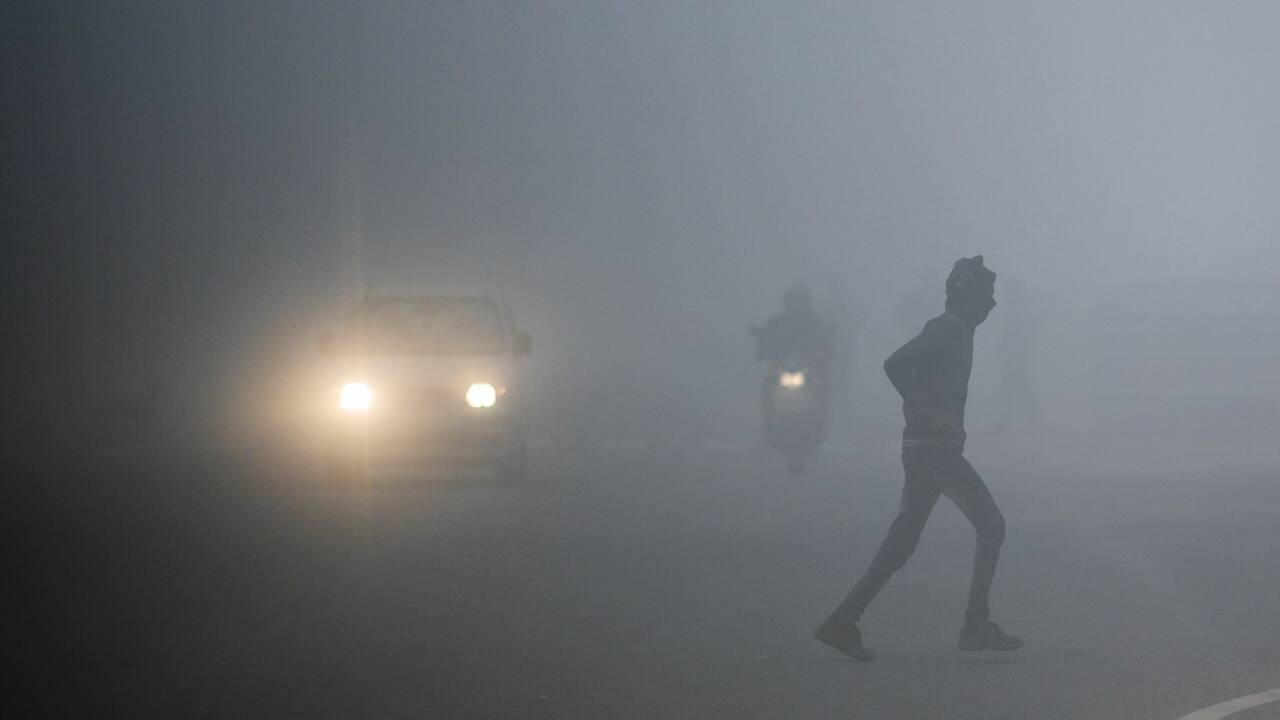 Froid et brouillard en Inde: des vols retardés, du chauffage pour les tigres