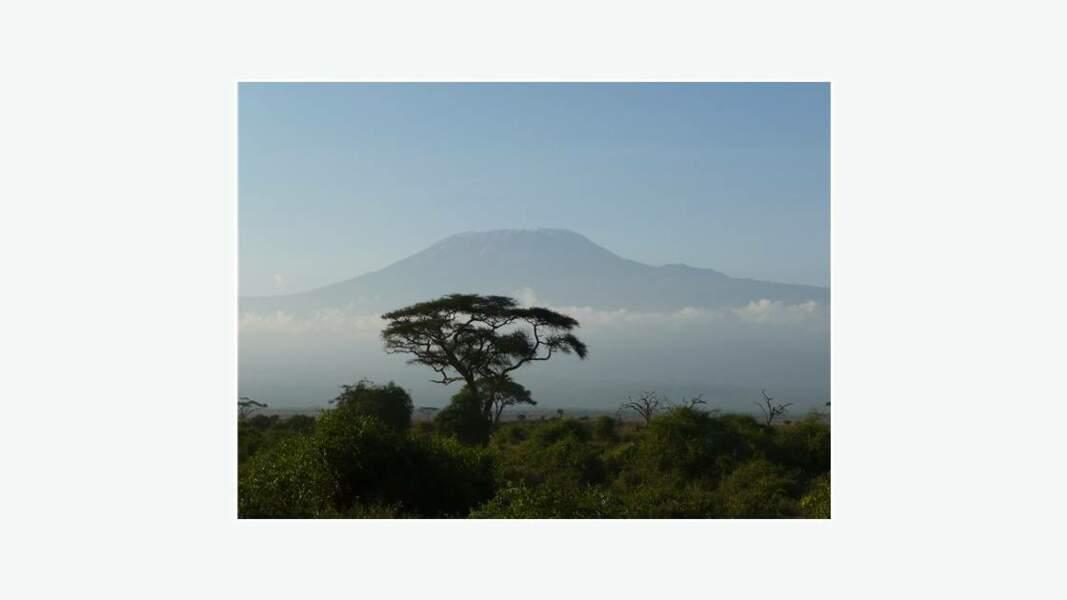 Kilimandjaro dans la brume