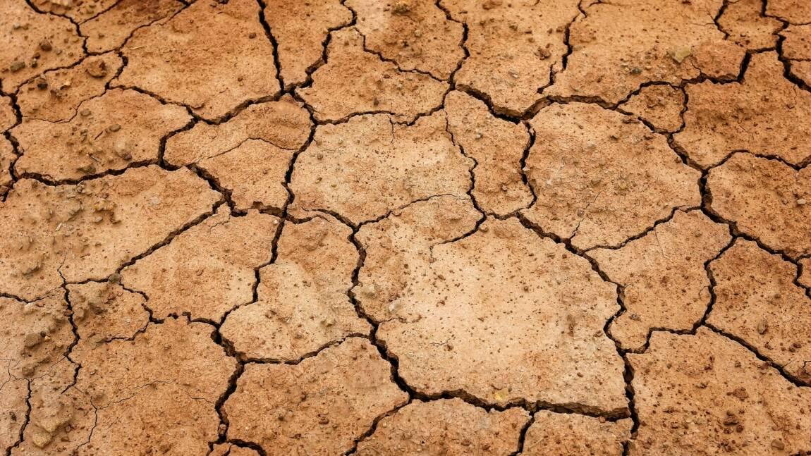 La Thaïlande fait face à sa pire sécheresse depuis 40 ans