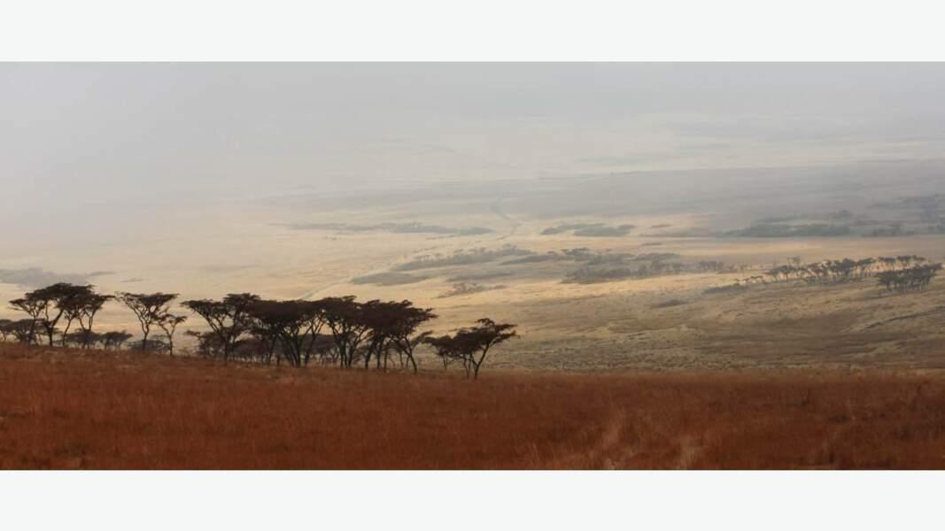 Au cœur du massif du Ngorongoro, dans le nord du pays