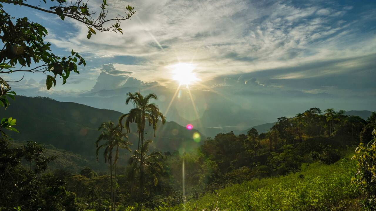Cartes, encyclopédies... Comment ce peuple d'Amazonie tente de préserver ses savoirs ancestraux