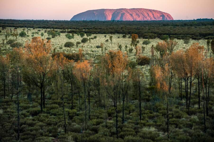 Uluru, comme une météorite en plein désert