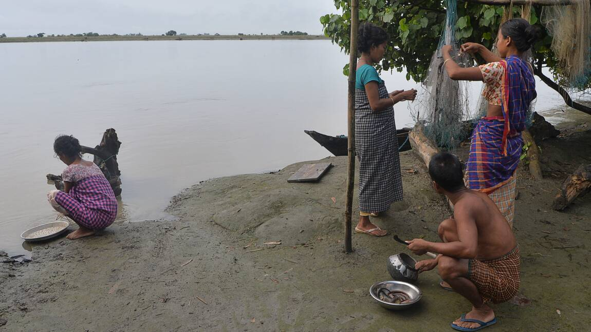 """""""Le fleuve a tout emporté"""": quand le Brahmapoutre dévore la terre"""
