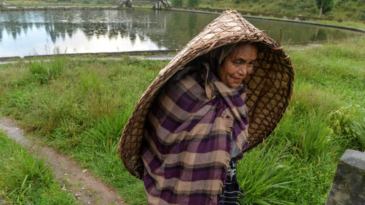 Sécheresses et inondations: la paradoxale crise de l'eau en Inde