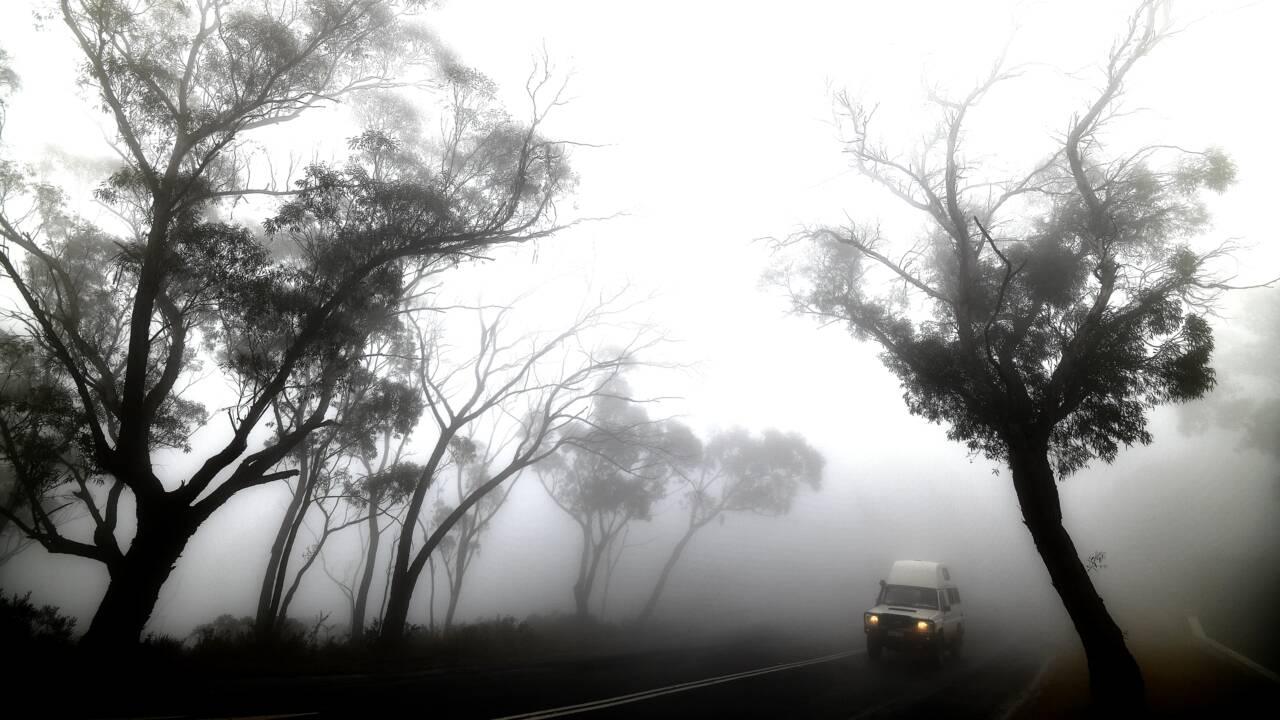 Incendies en Australie: la pluie redonne de l'espoir, la fumée perturbe les stars du tennis