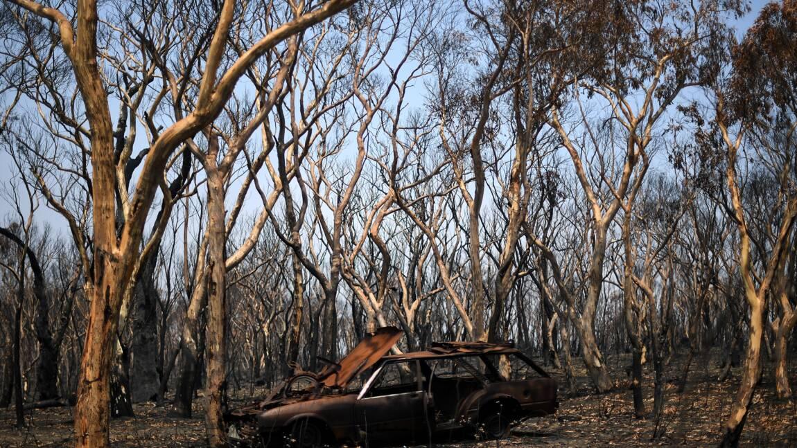 """Australie: le """"méga-feu"""" sous contrôle, de la pluie attendue"""