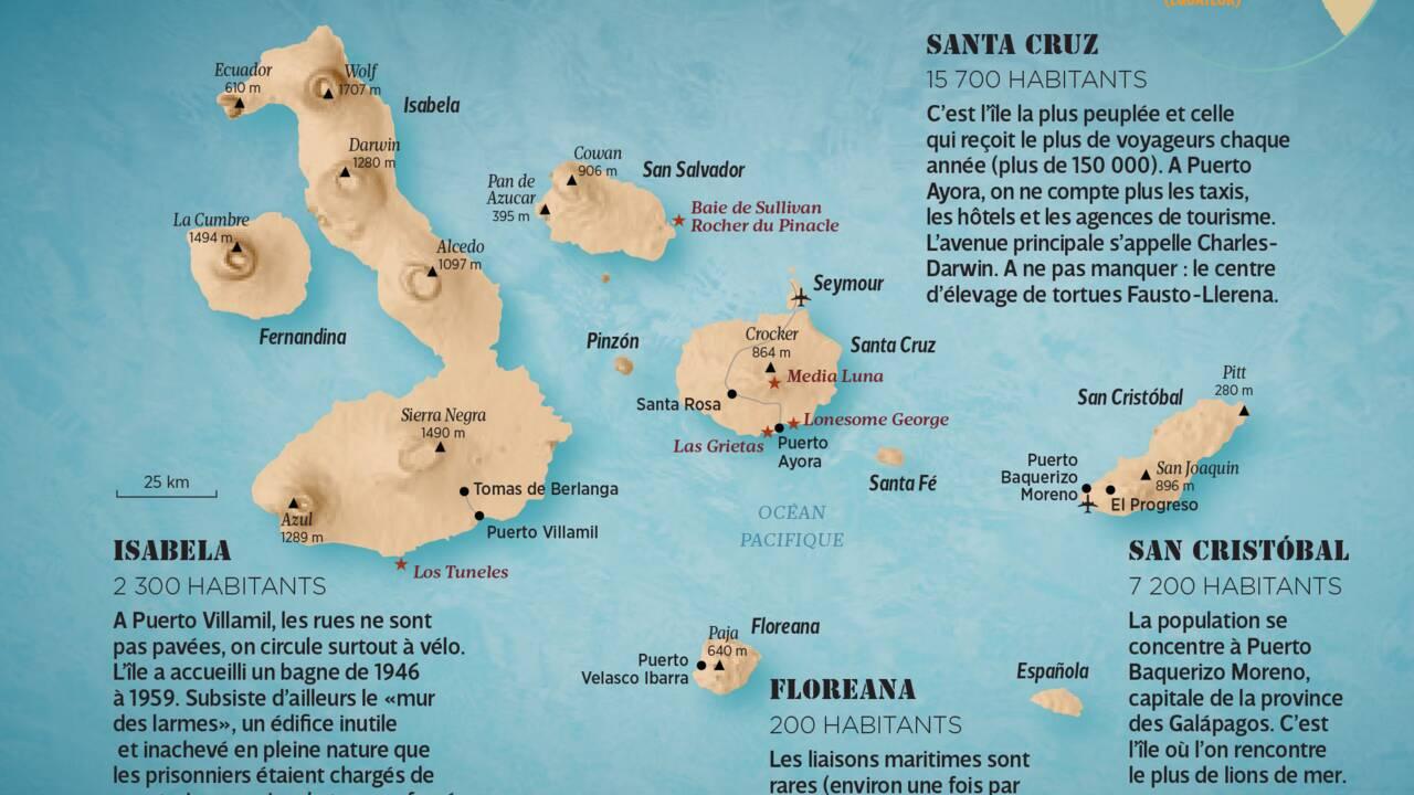 Cette tortue des Galápagos a sauvé son espèce grâce à sa libido : Diego rentre sur son île