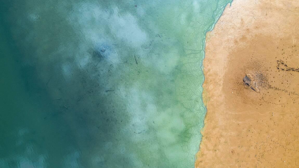 La décennie 2010 aura été la plus chaude de l'histoire de l'humanité pour les océans