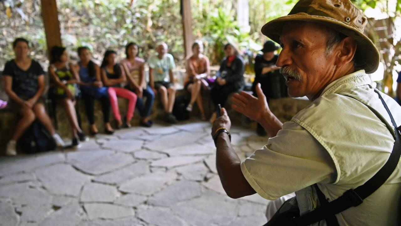 Salvador: des ex-guérilleros protègent la forêt qui leur avait donné refuge