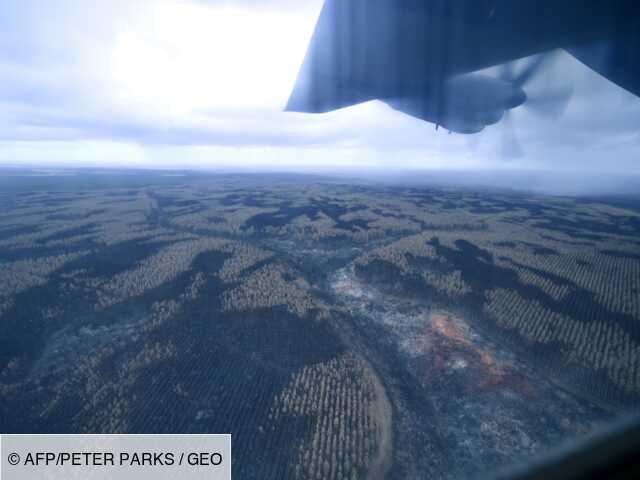 Feux en Australie: un avion bombardier d'eau disparu des écrans radars