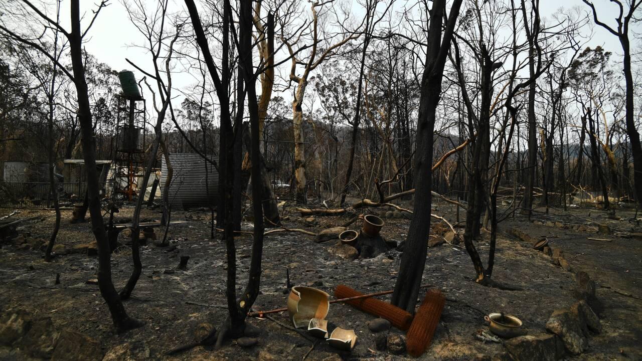 Australie: la pluie tombe et fait le bonheur des pompiers et des fermiers