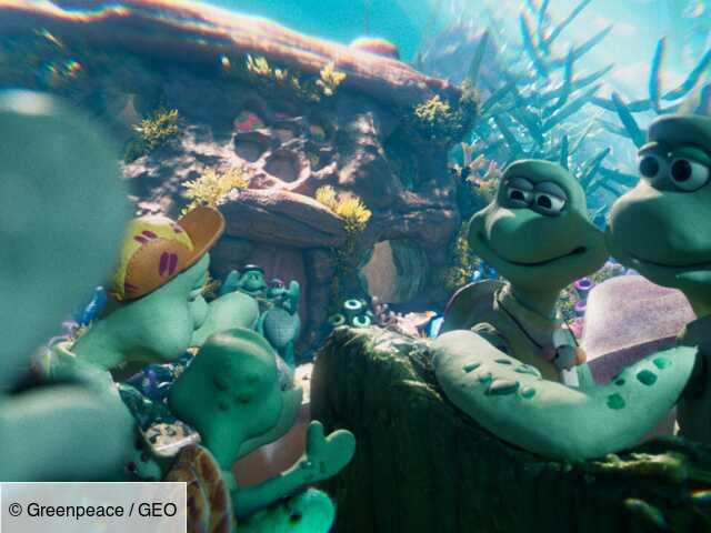 Greenpeace : un film d'animation des créateurs de Wallace et Gromit pour alerter sur la situation des tortues