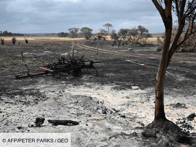 Australie: les agriculteurs comptent leurs plaies