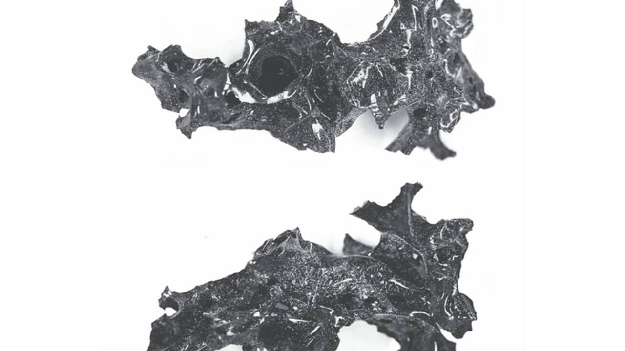 L'éruption du Vésuve pourrait avoir vitrifié le cerveau d'un habitant de Herculanum