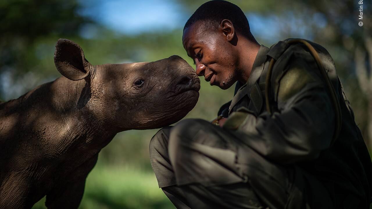 Et le gagnant du vote du public du Wildlife Photographer of the Year 2019 est...