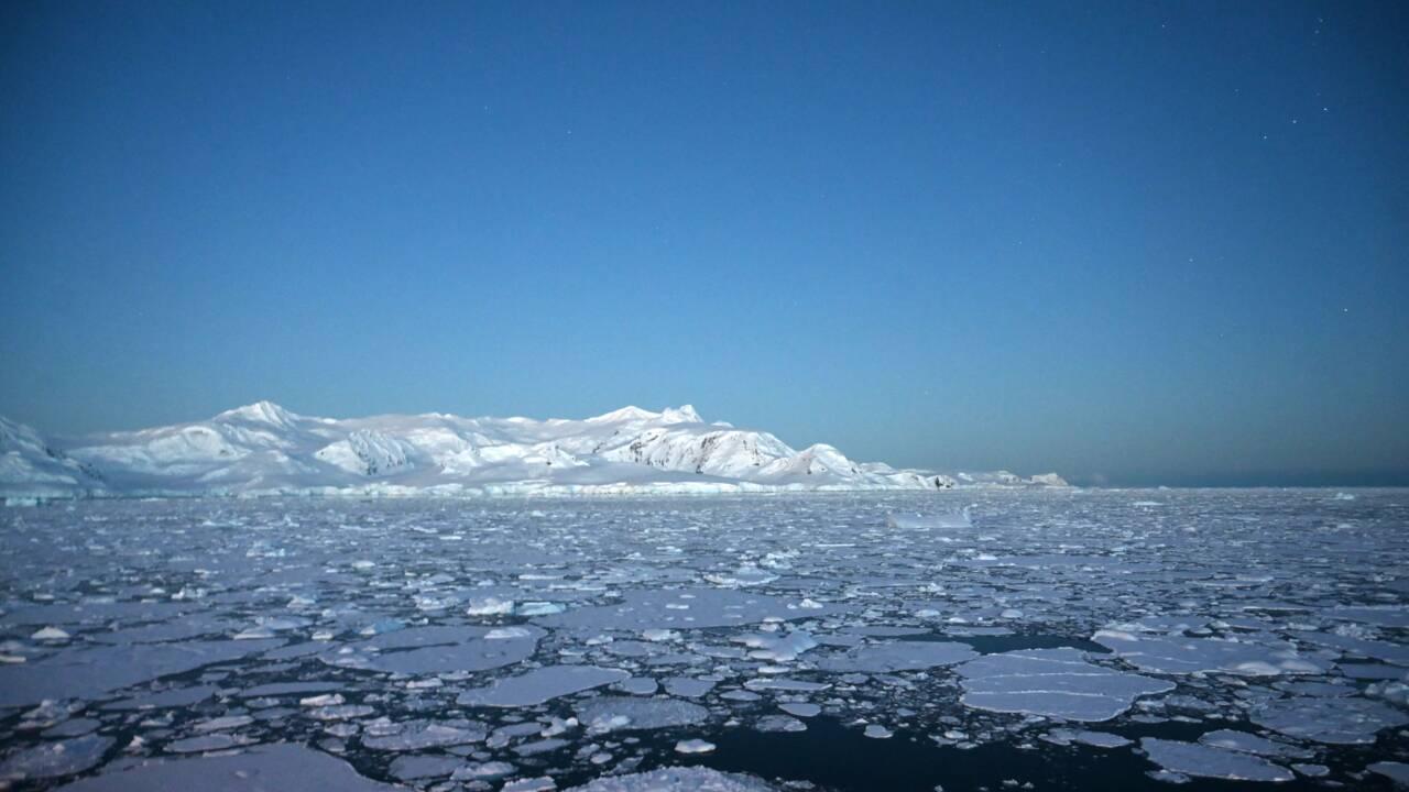 En Antarctique, la multiplication des records de chaleur inquiète