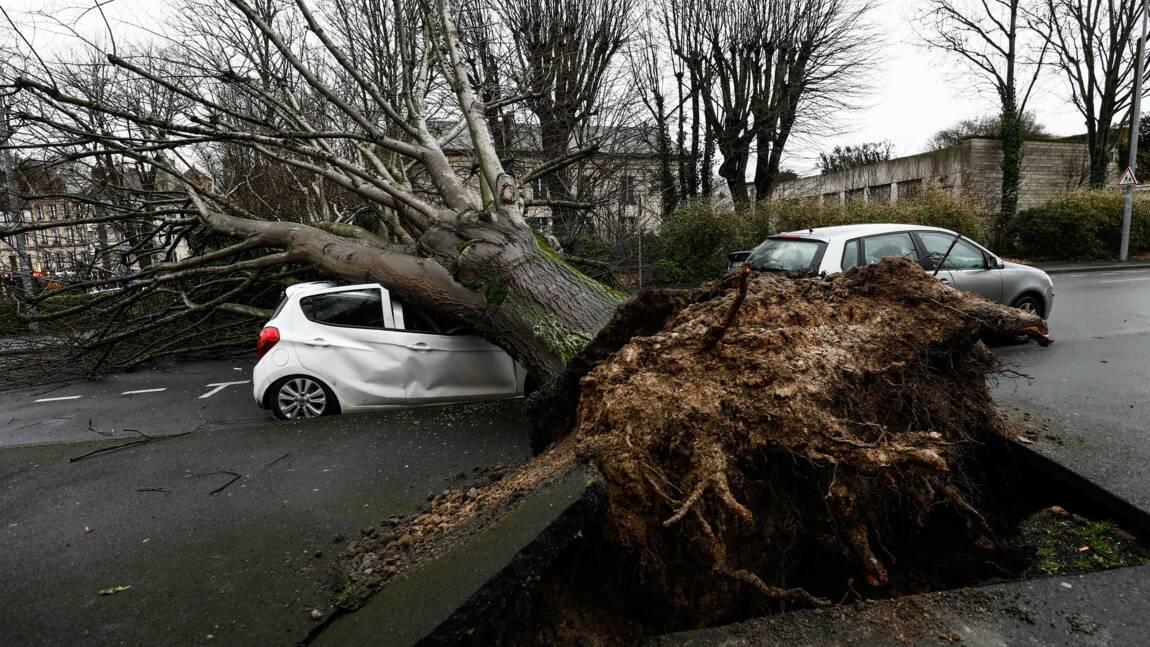 Tempête Dennis: encore 45.000 foyers privés d'électricité, trains perturbés