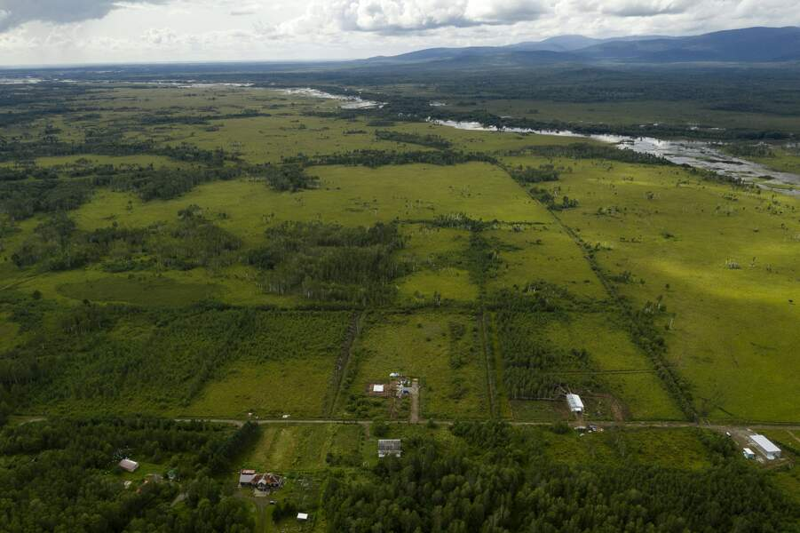 Parcelle de 5 hectares
